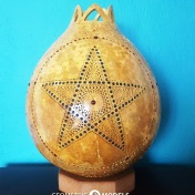 Star Gourd - day time 01